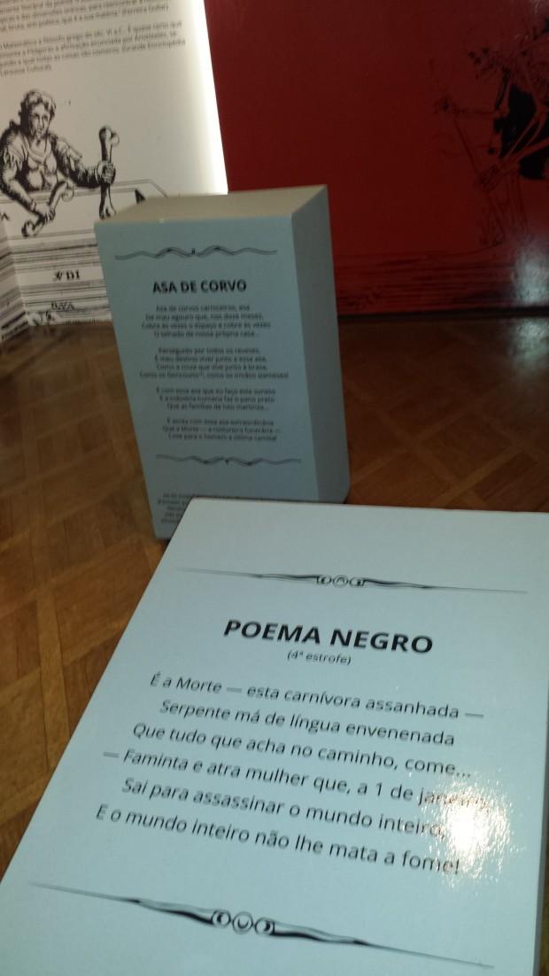 A ANJOS - Poema Negro + Asa de Corvo